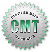 mold inspections in nj