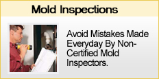 mold inspections nj